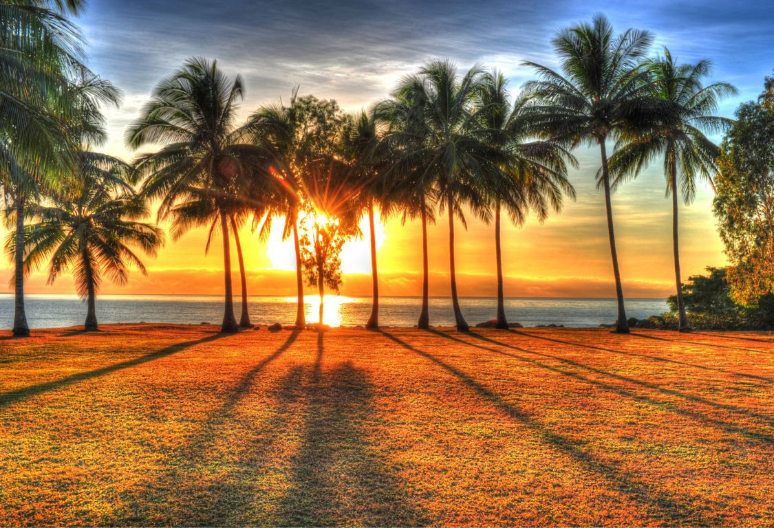 Cairns With Port Douglas 05 Nights / 06 Days